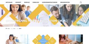 Screenshot Weblog Startseite Master Higher Education HUL Universität Hamburg